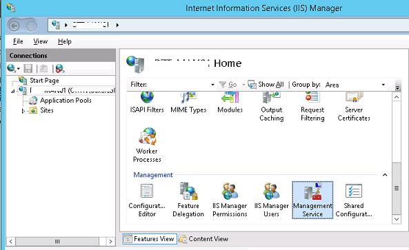 iis section: managment service