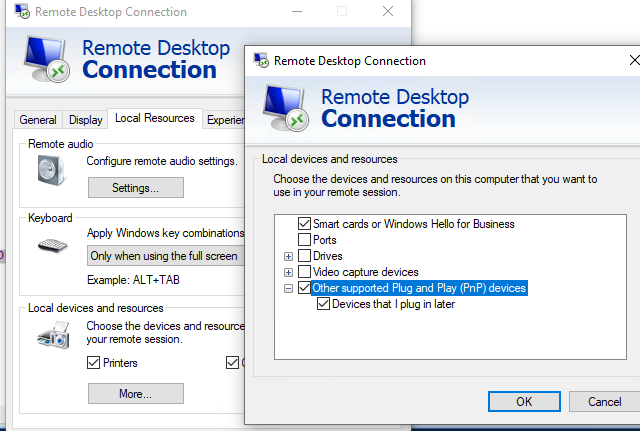 Redirect USB via RDP