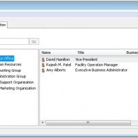 Hierarchical Address Book in Outlook 2010
