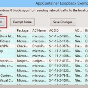AppContainer Loopback Exemption Utility
