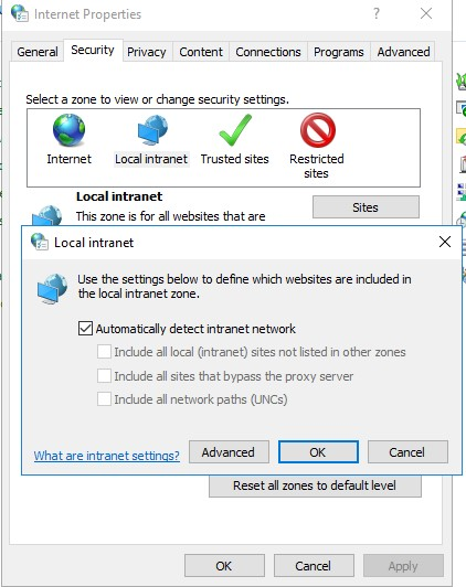 IE Security: Local Intranet Zone settings