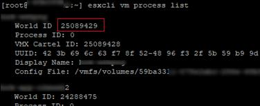 esxcli vm process list