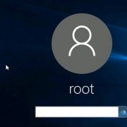 Windows 10: User password on login screen