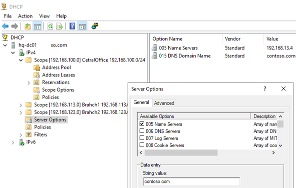 Server Options in DHCP console on Windows Server 2019