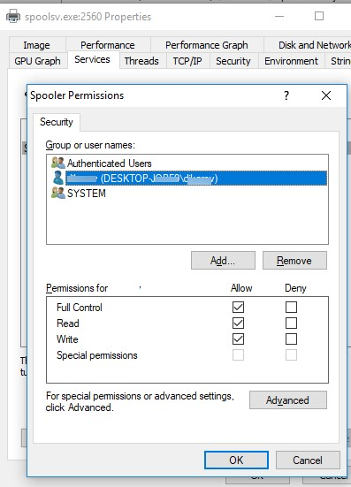 allow manage windows service using procexp