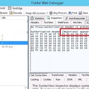 Fiddler - Authorization Header (Negotiate) appears to contain a Kerberos ticket