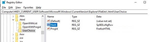 program assotiations on windows in registry: FileExts UserChoice