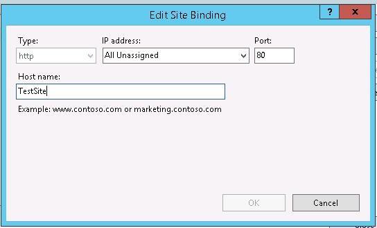 iis site binding