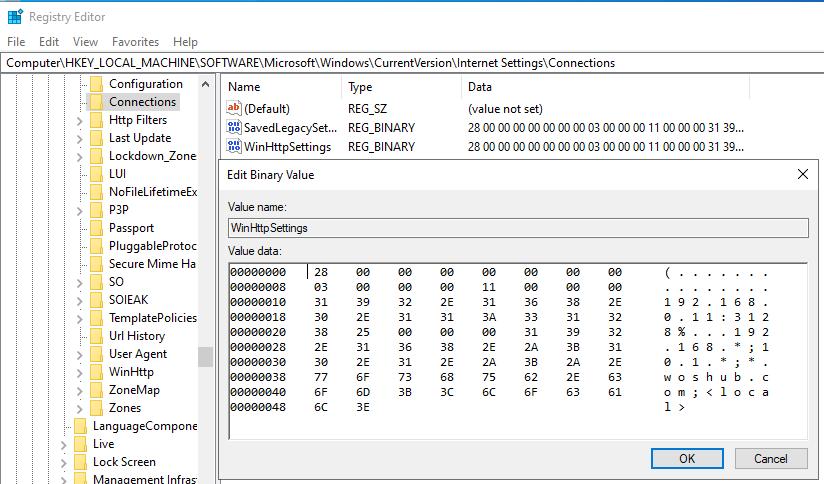 WinHttpSettings registry parameter
