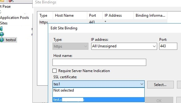 binding self signed sha256 certificate to iis site on windows server