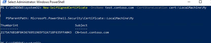 powershell: New-SelfSignedCertificate cmdlet on windows 10, windows server 2016