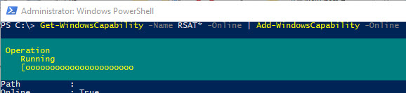 Add-WindowsCapability install rsat using powershell