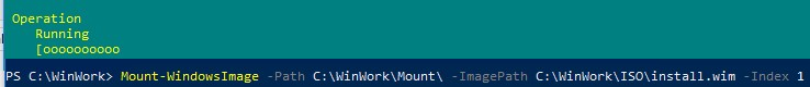 Mount-WindowsImage install.wim