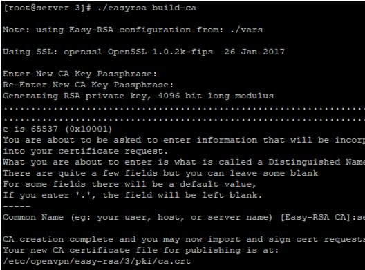 easyrsa generate ca key and certificates