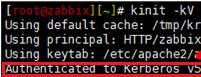 kinit check kerberos authentication