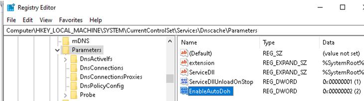 windows 10 enable dns over https via registry parameter EnableAutoDoh