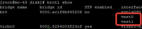 How to Setup Bridge Networking with KVM on Centos or RHEL?