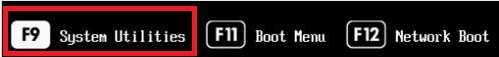 hpe server - enter ILO config menu by pressing F9