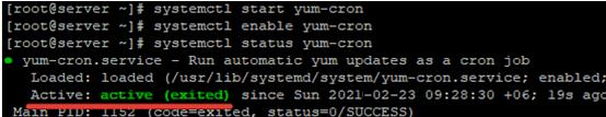 start yum-cron daemon on linux centos