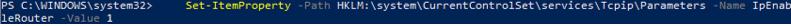 IpEnableRouter - enable packet forwarding on Windows via registry