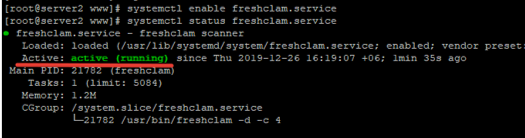 freshclam.service service in linux