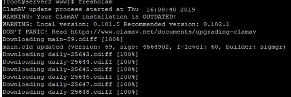 freshclam - update clavam antivirus definitions database